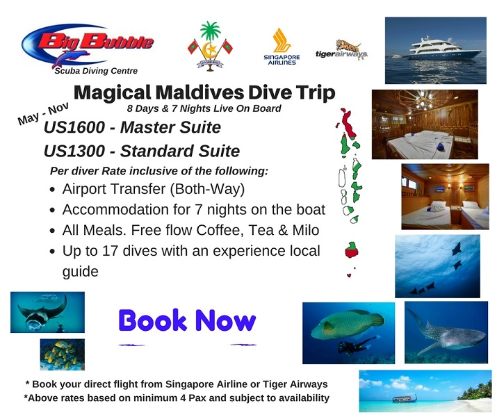 Maldives Liveaboard @ Maldives