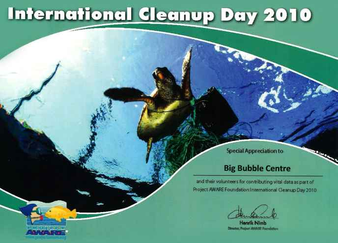 International-Cleanup-2010