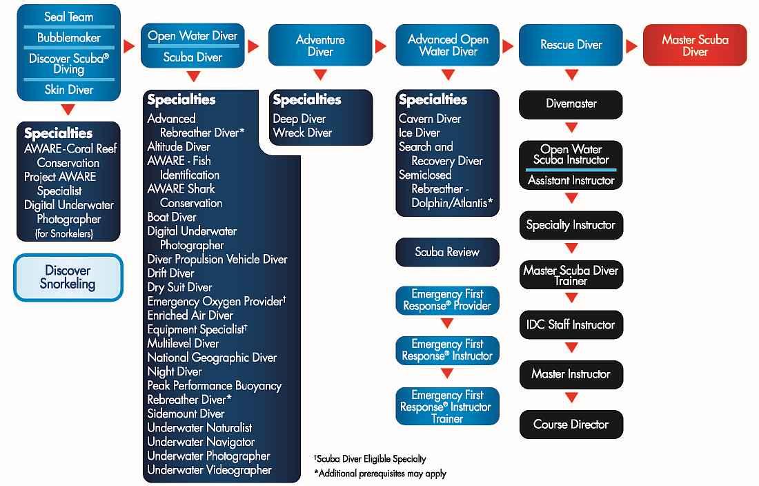 PADI-course-chart