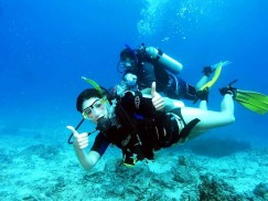 Recreational Scuba Diving Courses